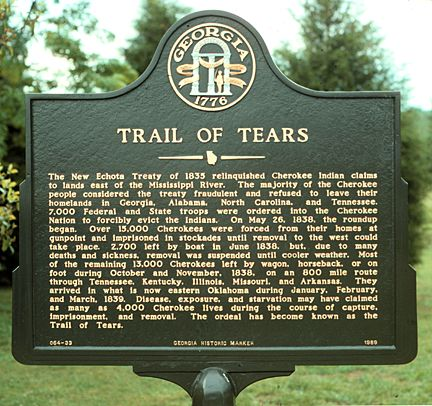 andrew jackson and trail of tears essay  · essay on the trail of tears during the trail, and after the trail andrew jackson did sample essays and essay examples on the trail of tears.